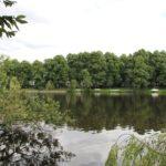 Eilbek: Wasserblick auf den Kuhmühlenteich