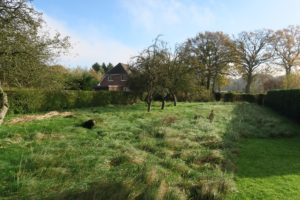 Halstenbek / Schenefeld: Traumgrundstück am Feldrand für EFH oder DH